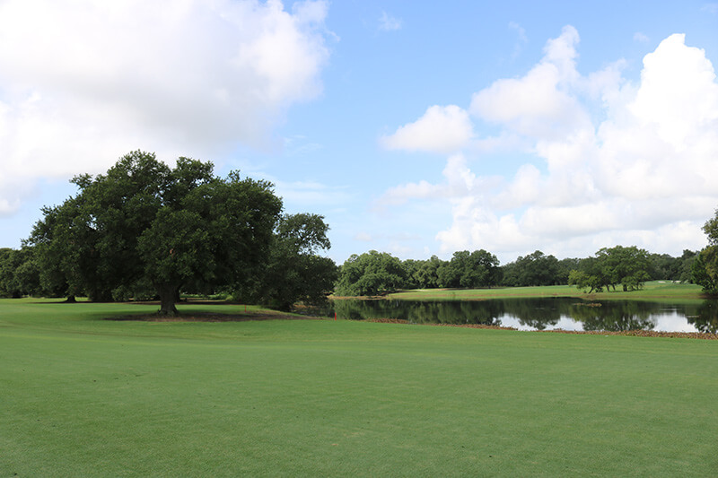 A view of green turf grass at a golf course that leads to a pond and large green trees with a blue sky and white clouds in the background