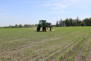 A green John Deere tractor is riding through a field with newly planted crops beginning to grow out of the soil