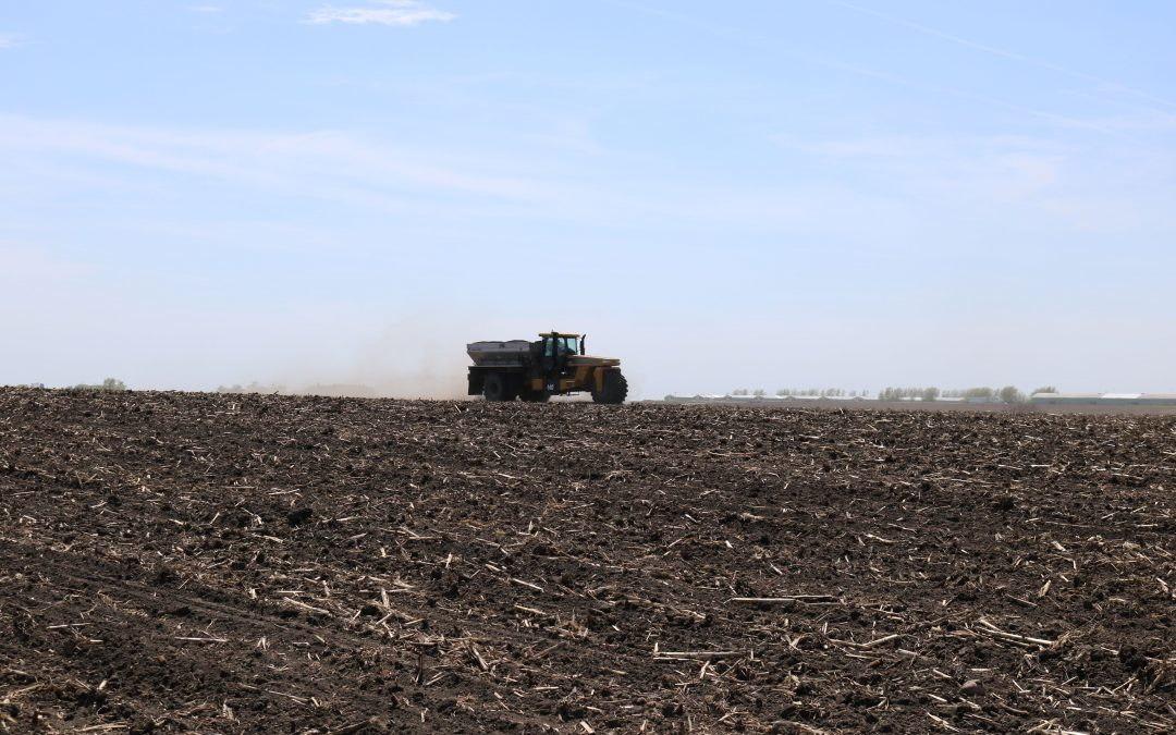 3 Factors to Consider When Choosing the Right Sulfur Fertilizer